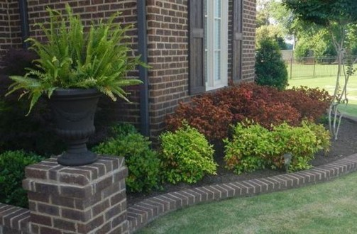 Gardening Tips- Maintenance Landscaping Front yard 10