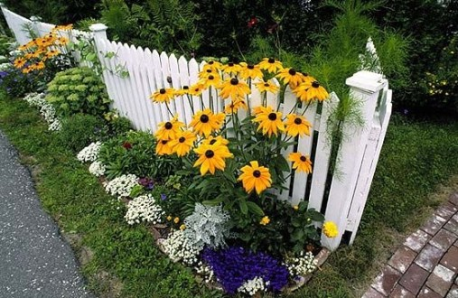 How to Coolest & Looks Bright, with Fences White-colored House 30