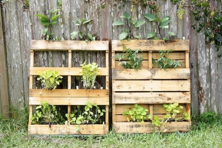 Inexpensive DIY Planter with Pallet 07