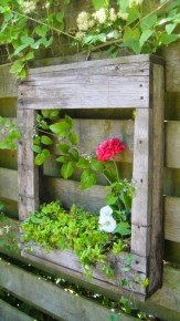 Inexpensive DIY Planter with Pallet 10