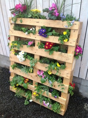 Inexpensive DIY Planter with Pallet 24