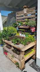 Inexpensive DIY Planter with Pallet 28