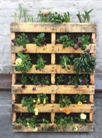 Inexpensive DIY Planter with Pallet 45