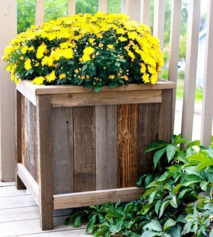 Inexpensive DIY Planter with Pallet 49
