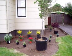 Most Amazing Front Yard and Backyard Landscaping Ideas 22