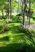 Most Amazing Front Yard and Backyard Landscaping Ideas 38