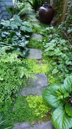 Most Amazing Side Yard Landscaping Ideas to Beautify Your Garden 07