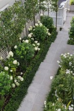 Mesmerizing Side Yard Landscaping Design Ideas to Perfect Your Garden Design 33
