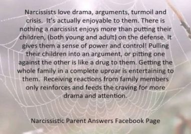 Narcissistic Triangulation - One of the Narcissist's weapons