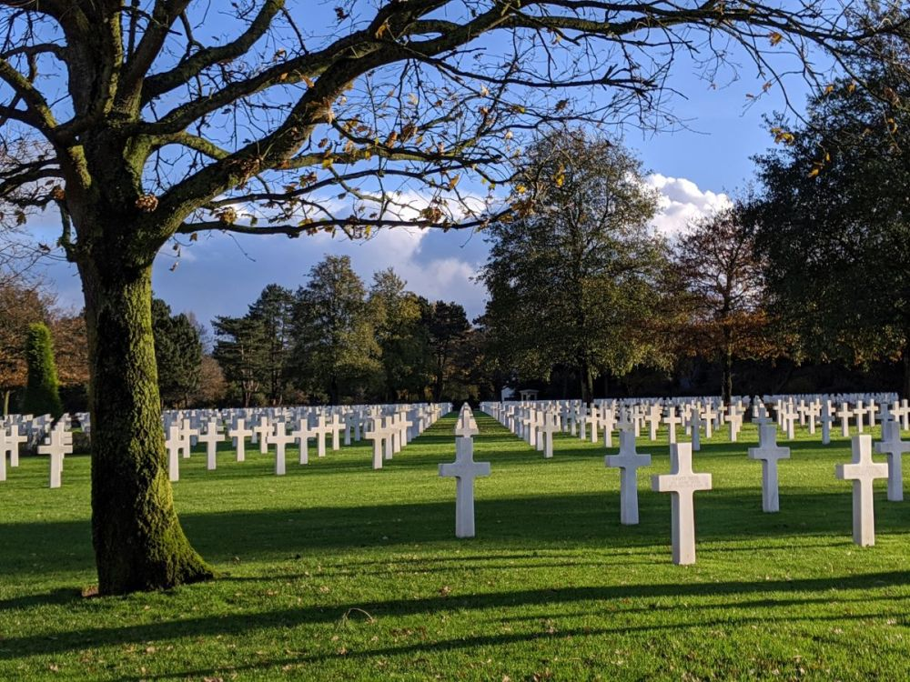 A tree in the Normandy American Cemetery is planted near hundreds of white crosses and burials.