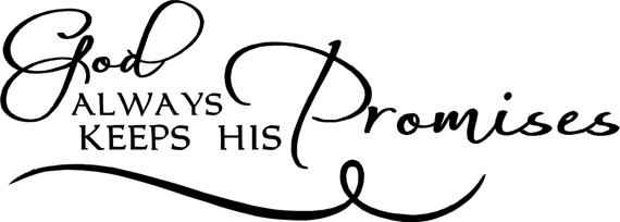 God NEVER disappoints! {Anchor of Promise #43}