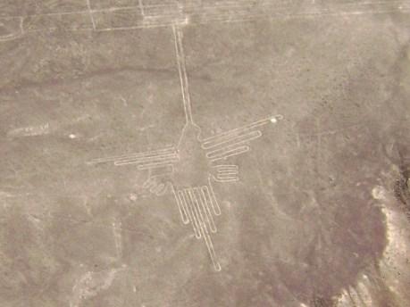Nazca_Lines,_Humming_Bird