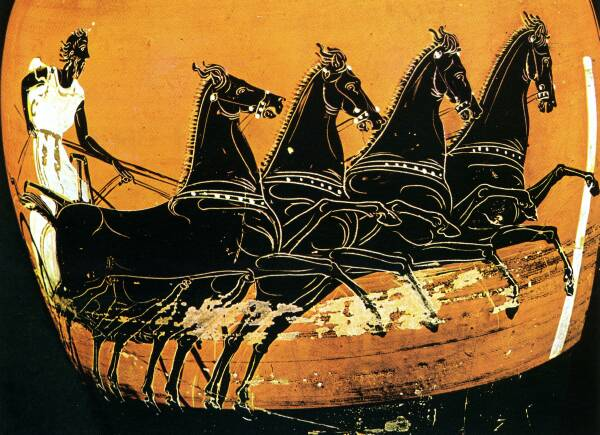 Image result for ancient greek chariot horse