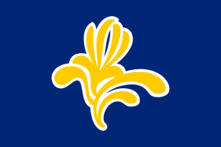 The flag of the Brussels-Capital Region before 2015