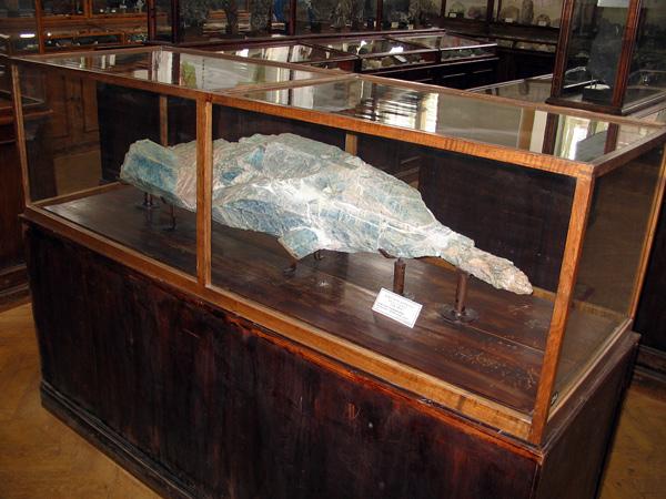 A monstrous beryl crystal