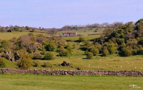 My Farmhouse and Adjacent Land Parcel