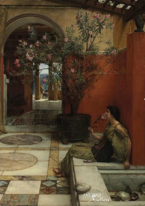 Stone in Pompeii's Bars, Taverns & Baths 1
