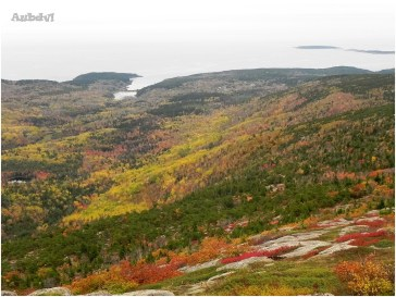 Il foliage nell'Acadia N.P.
