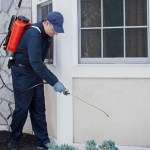 Dignificación del Profesional del Control de Plagas Urbanas
