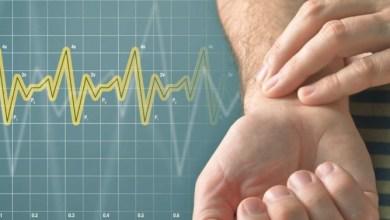 لماذا يعتبر معدل النبض المنخفض جدا خطير عند الأنسان