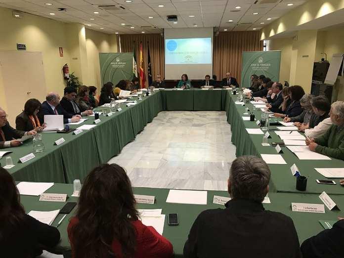 Consejo Social Andalucía
