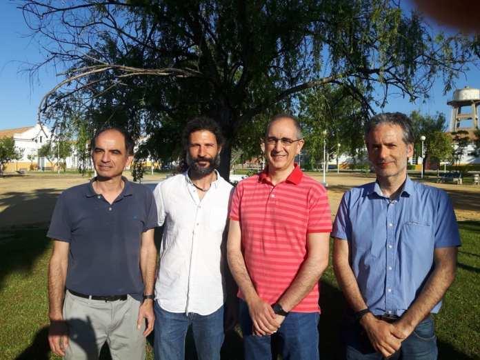 investigadores eucalipto energia