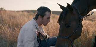 The rider película