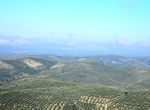 Andalusia_Provincia_Jaen_Cosa Vedere Andalusia