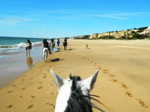 Nº 20. Cavalcando lungo la spiaggia di Doñana.