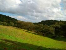 hornachuelo_cordoba_andalusia_andalucia_cosa-vedere_consigli_tour.