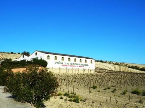 Cantina Bodega Jerez