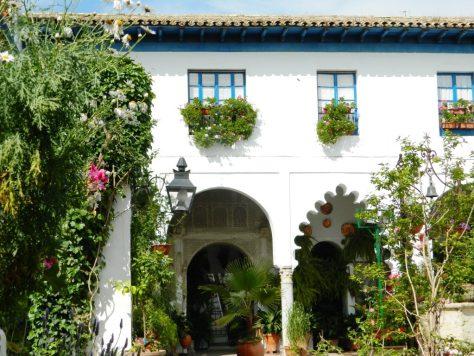 Cosa vedere cordoba maggio patio andalusia