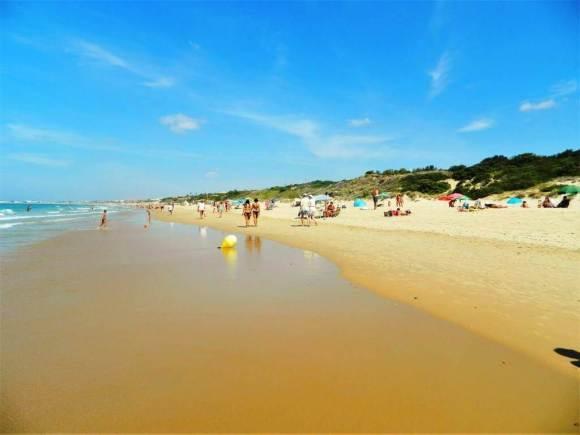 spiagge_siviglia_la_barrosa