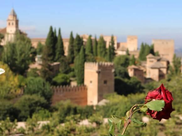 visitare_alhambra_granada_guida_giardini