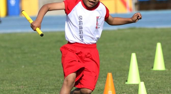 Quieren volver: El atletismo tarijeño presentó sus protocolos al SEDEDE