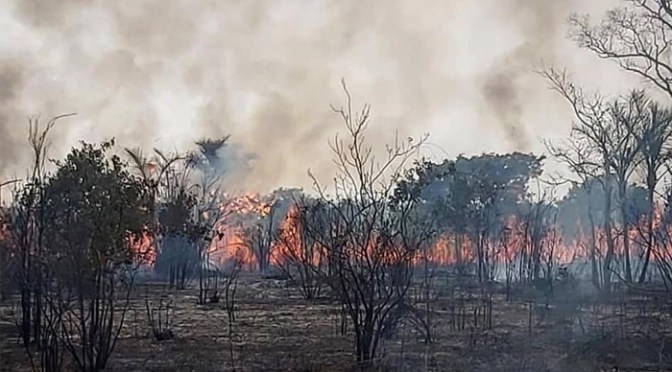 Incendios: Gobierno estima 320.000 Ha afectadas y analiza derogar decreto de los chaqueos