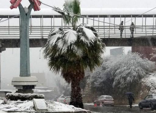 Senamhi pronostica nevada en Tarija y en otras 4 regiones, podría durar hasta el viernes