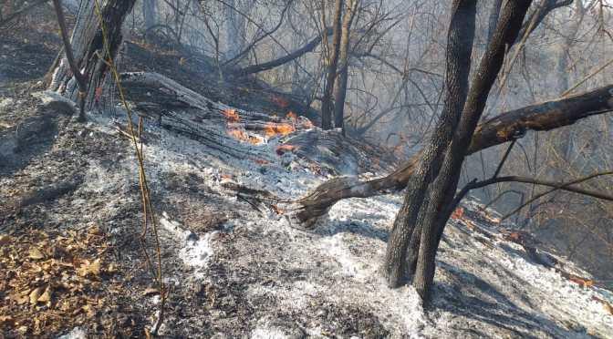 Lluvia sofoca fuego en Buzuy: La afectación podría ser mayor al anterior incendio