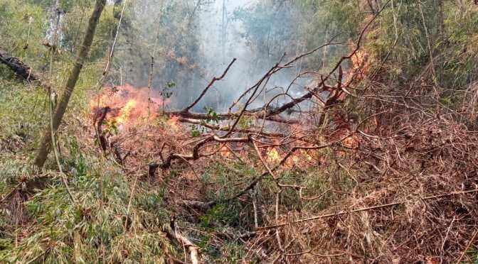 Lluvia ayudó a sofocar incendios en el municipio de Bermejo y Padcaya