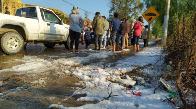Granizada afecta producción agrícola en las provincias Cercado y Méndez de Tarija