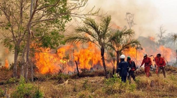 Cuatro comunidades de Bermejo sufren incendios forestales