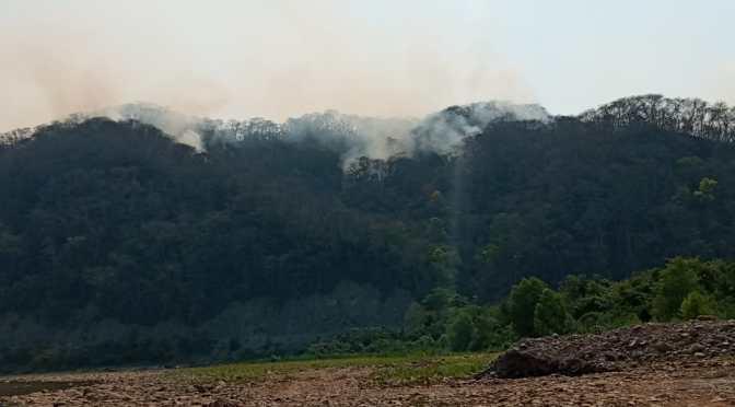 Cinco incendios se registraron en Bermejo durante el fin de semana
