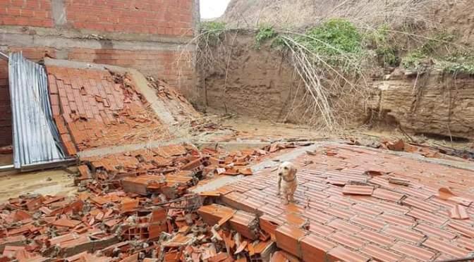 Paredes colapsadas, lodo y agua en viviendas se reportan en Tarija por fuertes lluvias