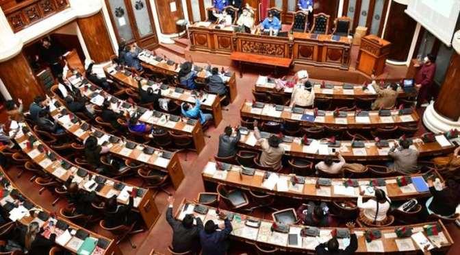 Comisión aprueba Bs 228 mil millones para Presupuesto General 2021, y se considera un 10% para la salud