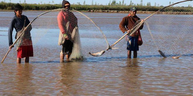 Declaran la pesca en el Pilcomayo patrimonio de Tarija