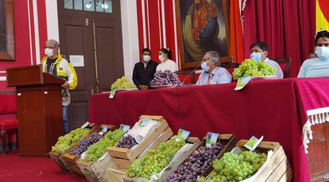 Tarija exportará uva de mesa al mercado de Paraguay