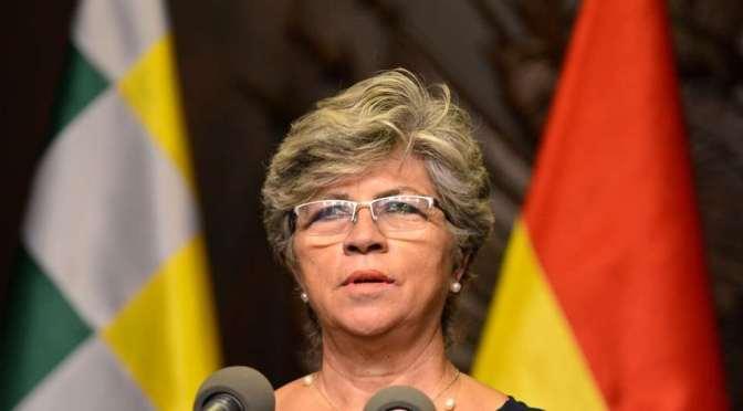 Cívicos cruceños piden que Bolsonaro otorgue asilo a exministra Pinckert