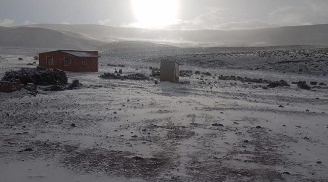 La nieve no cesa en sudoeste de Potosí y hay alerta de viento helado