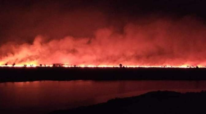 Un incendio forestal afecta al Parque Nacional Otuquis en Santa Cruz