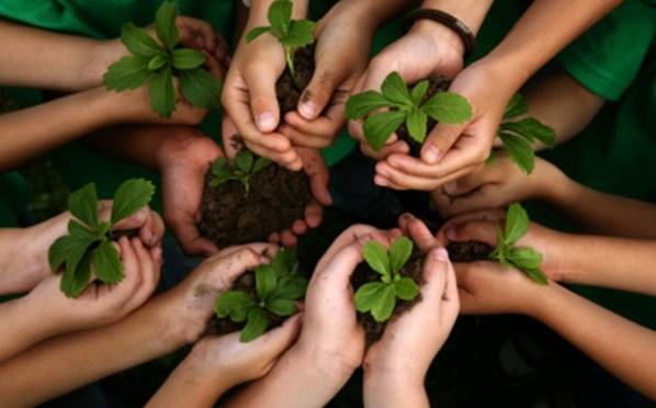 Comisión legislativa continúa con la socialización del proyecto de ley de creación de la Defensoría de la Madre Tierra